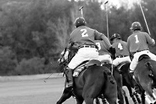 Veuve Clicquot Gold Cup Polo