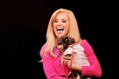 Legally Blonde - London Tickets