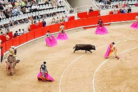 Ingressos para Bullfighting Night Seville