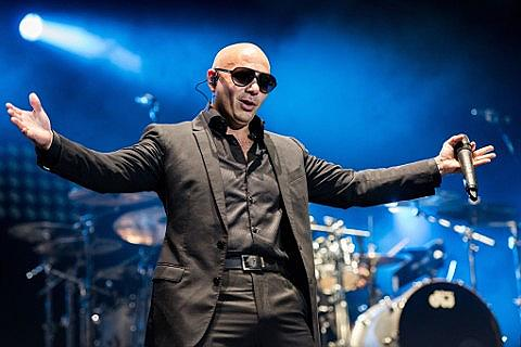 Entradas Pitbull
