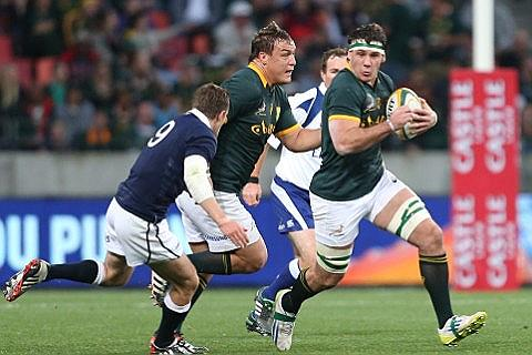 Springboks Home Fixtures