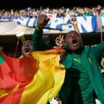 Cameroon - FIFA World Cup 2014