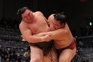 Sumo November Tournament