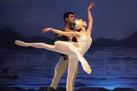 Ingressos para Swan Lake