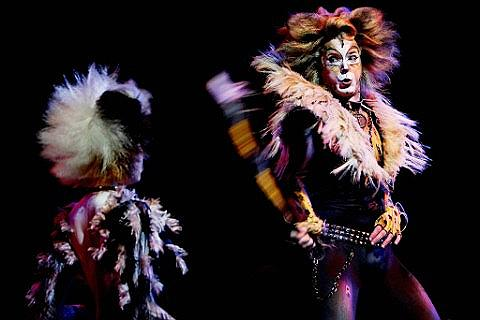 Cats - Oxford Tickets