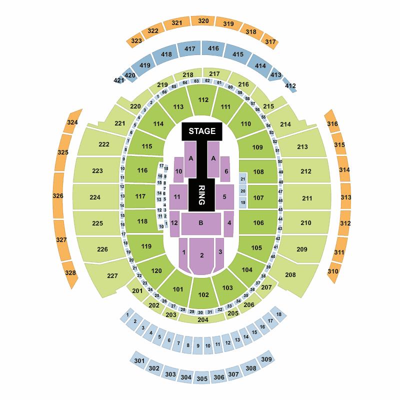 Wwe Live Holiday Tour Madison Square Garden New York Tickets Mon Dec 26 2016 Viagogo